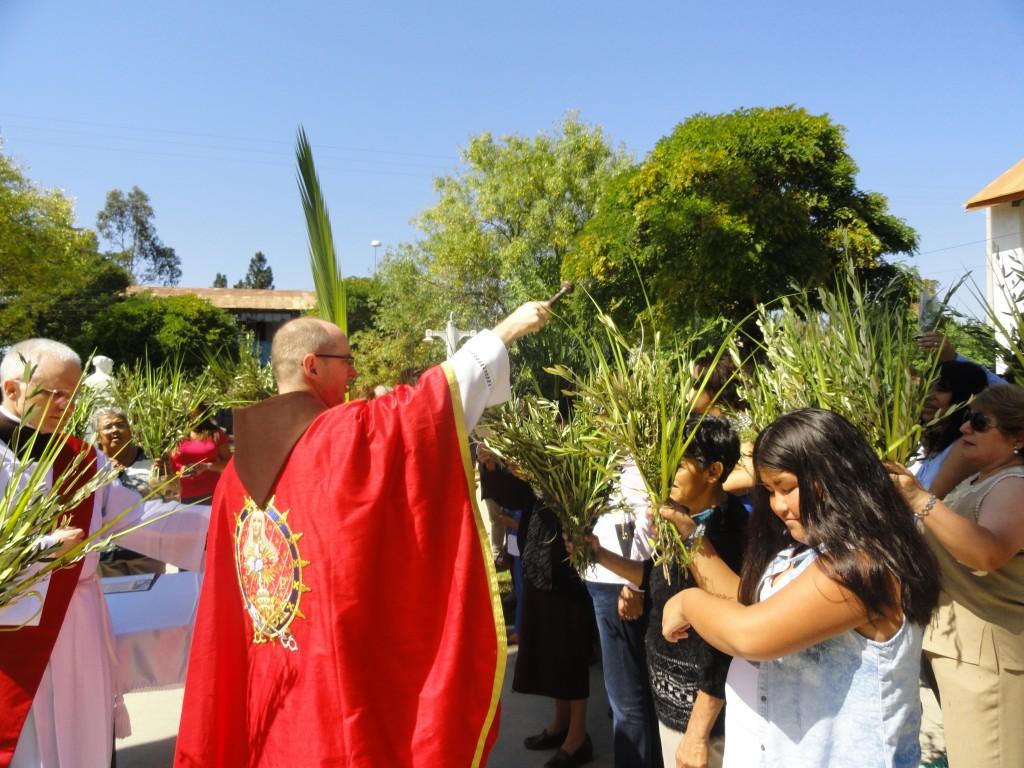 Domingo de Ramos en Lagunillas – V región